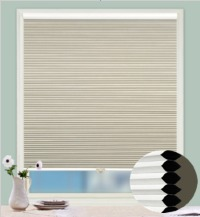 HP112LL3062-25mm Cordless Cellular Blinds