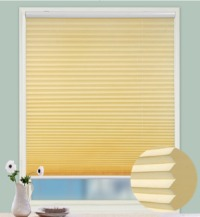 20mm Cordless Pleated Blind