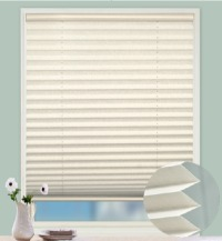 25mm Cordless Pleated Blind